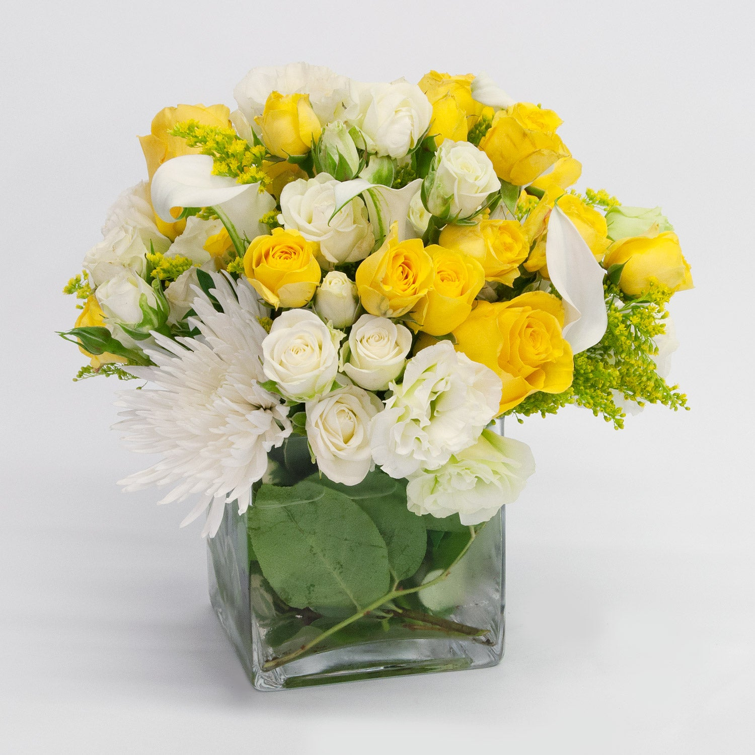 Exceptional Yellow and White Roses