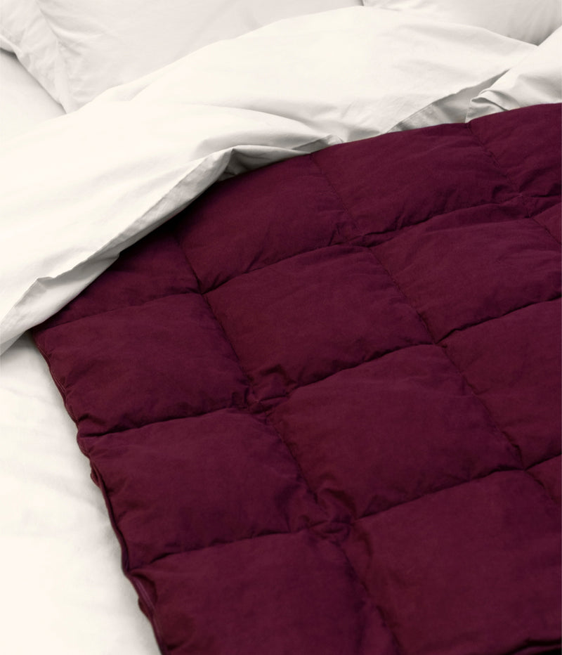 Down Blanket Cabernet