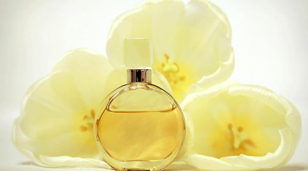 What is aromatherapy: facts and uses. Aromatherapy oils