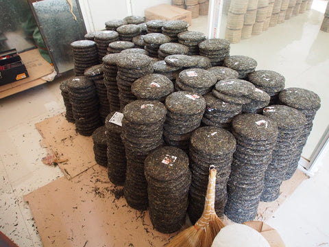 Dried puer cakes ready for wrapping