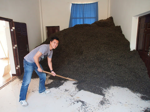 A mountain of puer tea (not ours!)
