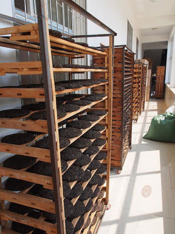 Pressed puer cakes are placed in racks to dry
