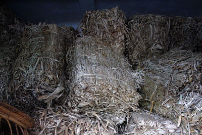 Bales of mulberry bark waiting to be pulped