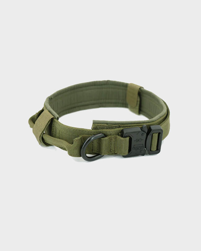 Brown Military Pet Collar
