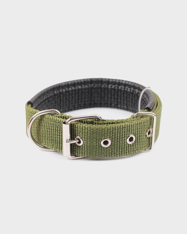 Black Signature Pet Collar