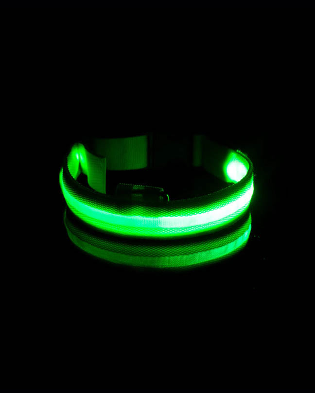 Green Glow in the Dark Pet Collar