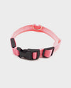 Red Glow in the Dark Pet Collar