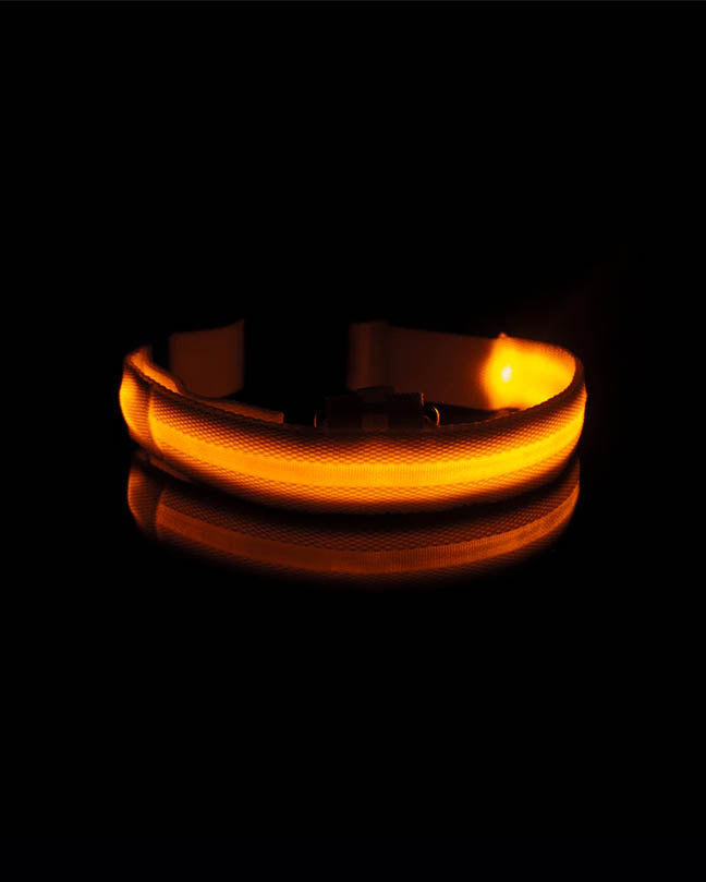 Yellow Glow in the Dark Pet Collar