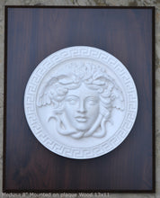 "Load image into Gallery viewer, History Medusa Versace design Artifact Carved Sculpture Statue 8"" www.Neo-Mfg.com Mounted on Plaque"