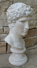 "Load image into Gallery viewer, Roman Greek victorious Athlete Bust sculpture 17"" www.Neo-Mfg.com home decor Museum reproduction"