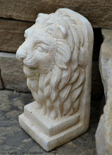 Load image into Gallery viewer, Lion Bust Crete sculpture art www.Neo-Mfg.com home decor 11""