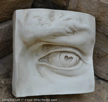 Load image into Gallery viewer, Roman Michelangelo large David Eye, Nose or mouth face Plaque Sculpture  www.Neo-Mfg.com museum reproduction Brucciani sold as EACH