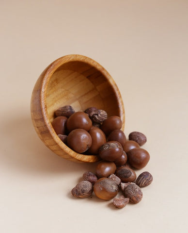 Bowl of Shea Butter nuts