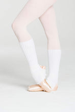 Load image into Gallery viewer, ACLW02 40cm Legwarmers