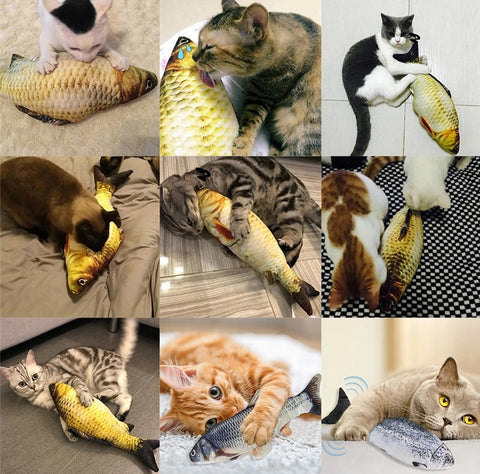 USB rechargeable Flippy Fish Cat Toy