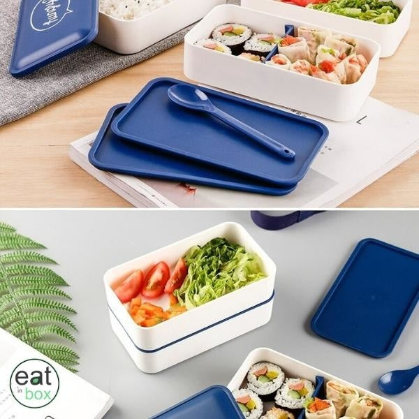 bento lunch box rectangle repas froid