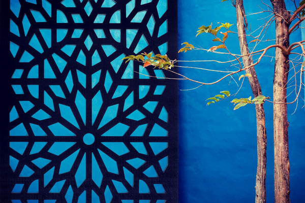 Garden wall art and trellis installed on blue wall by Screen With Envy