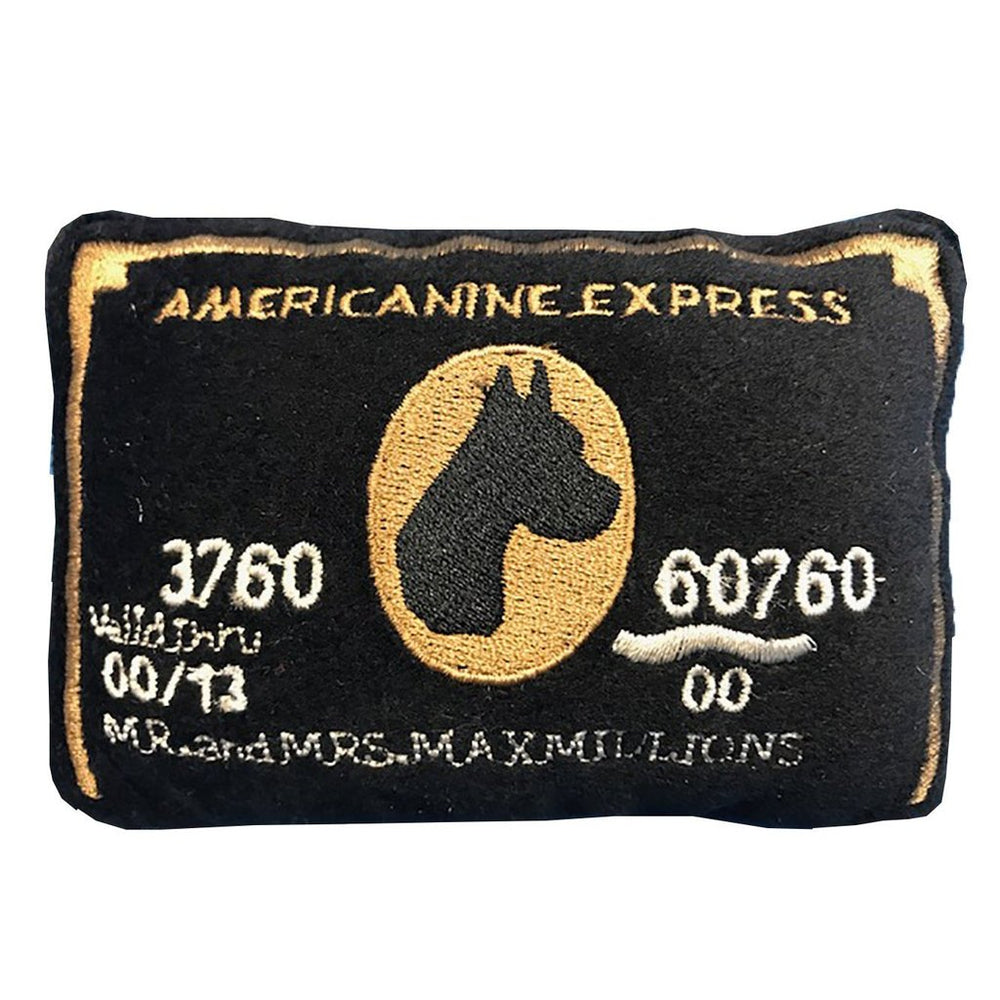 Americanine Express Credit Card