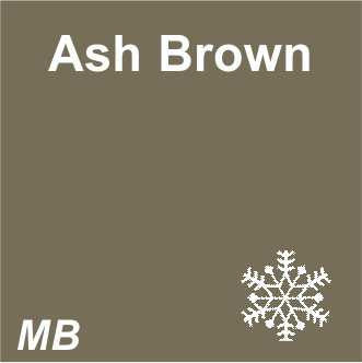 EYEBROW - 3D Microblading | Light Brows | Ash Brown