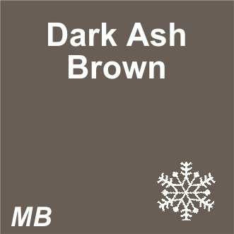 EYEBROW - 3D Microblading | Dark Brows | Dark Ash Brown