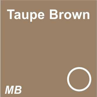 EYEBROW - 3D Microblading | Dark Brows | Taupe Brown
