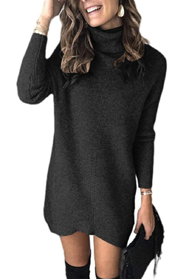 Turtle Neck Ribbed Knit Black Sweater Dress
