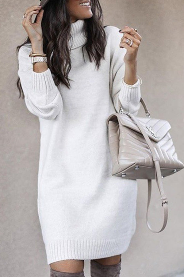 Turtleneck Solid Long Sleeve Sweater Dress For Women