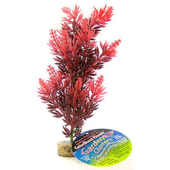 "Blue Ribbon Bush Plant with Gravel Base - Red 8"" Tall"