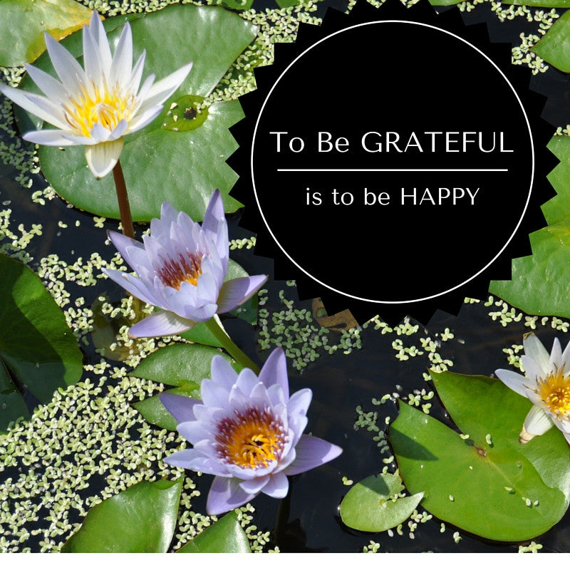 To be grateful is to be happy.