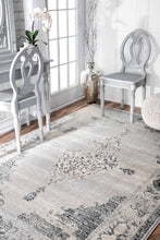 Load image into Gallery viewer, nuLOOM Vintage Sherrell Light Grey Area Rug