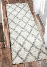 Load image into Gallery viewer, nuLOOM Shanna Shaggy OZEZ04A Area Rug