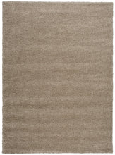 Load image into Gallery viewer, Nourison Amore Oyster Area Rug AMOR1 OYSTR