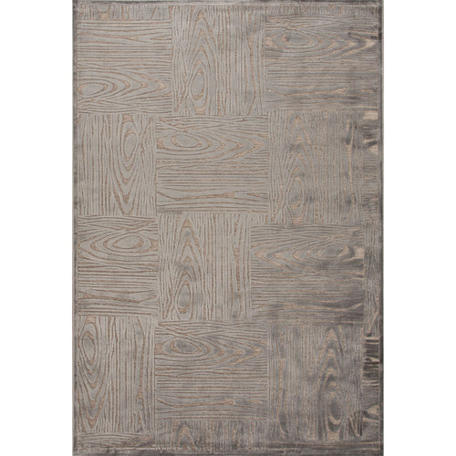 Jaipur Rugs Modern Tone-on-tone Pattern Gray/Taupe Rayon and Chenille Area Rug