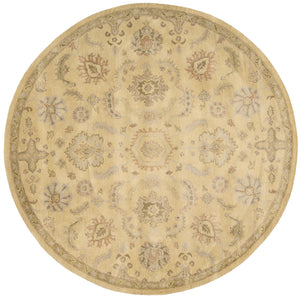 Nourison Jaipur Light Gold Area Rug JA54 LGD