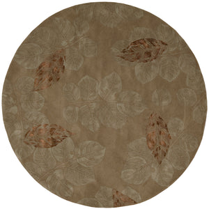 Nourison Julian Brown Area Rug JL62 BRN