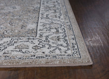 Load image into Gallery viewer, Kas Rugs Pesha 7210 Sand/Oatmeal Tabriz Area Rug