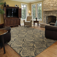 Load image into Gallery viewer, Oriental Weavers Stratton 4960C Blue/Ivory Oriental Area Rug