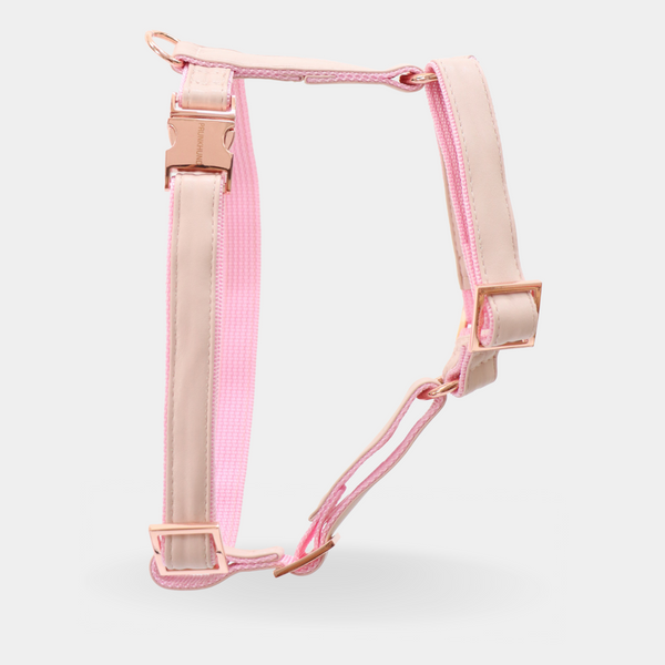 Dog harness BLUSH