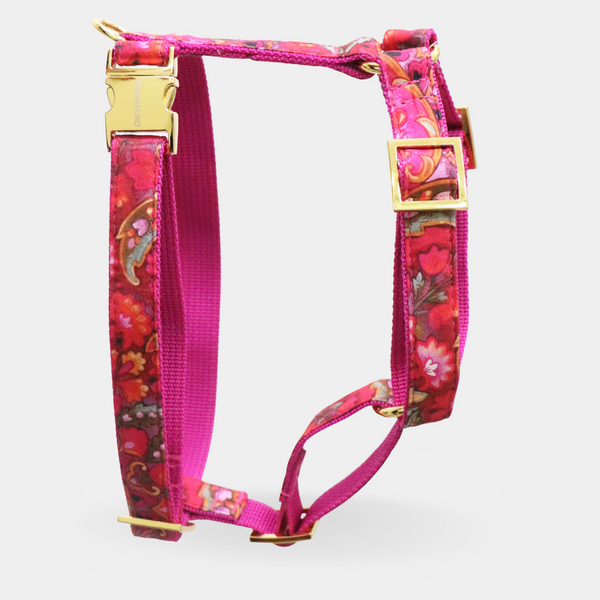 Dog harness BOHO