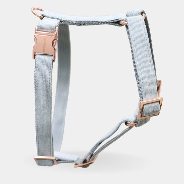 Dog harness DOVE