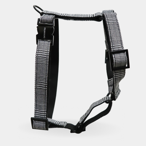 Dog harness LONDONER