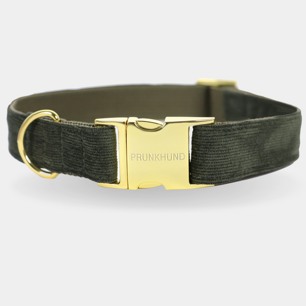 FOREST dog collar
