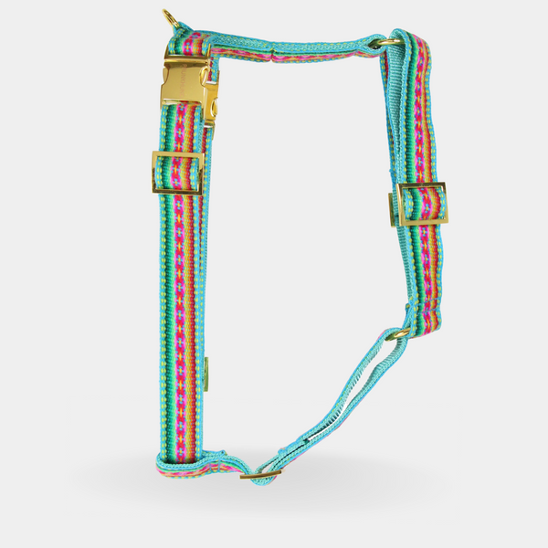 Dog harness IBIZA MINT