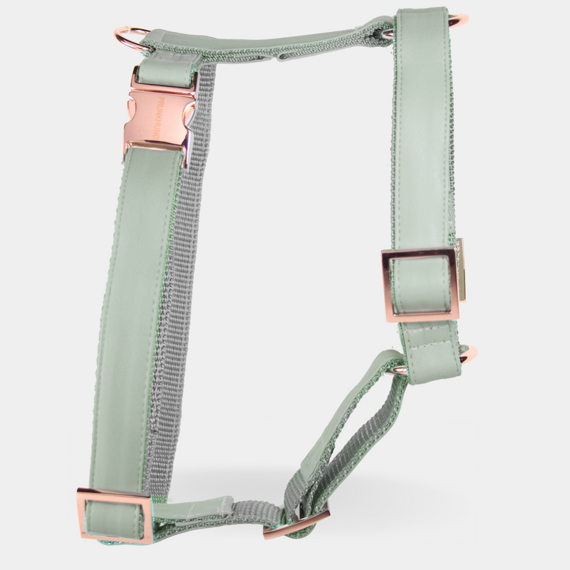 MINT dog harness
