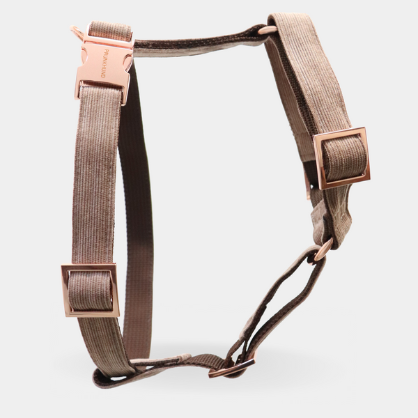 Dog harness MOCCA