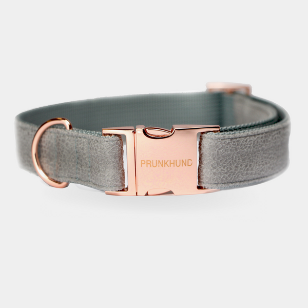 Dog collar CONCRETE