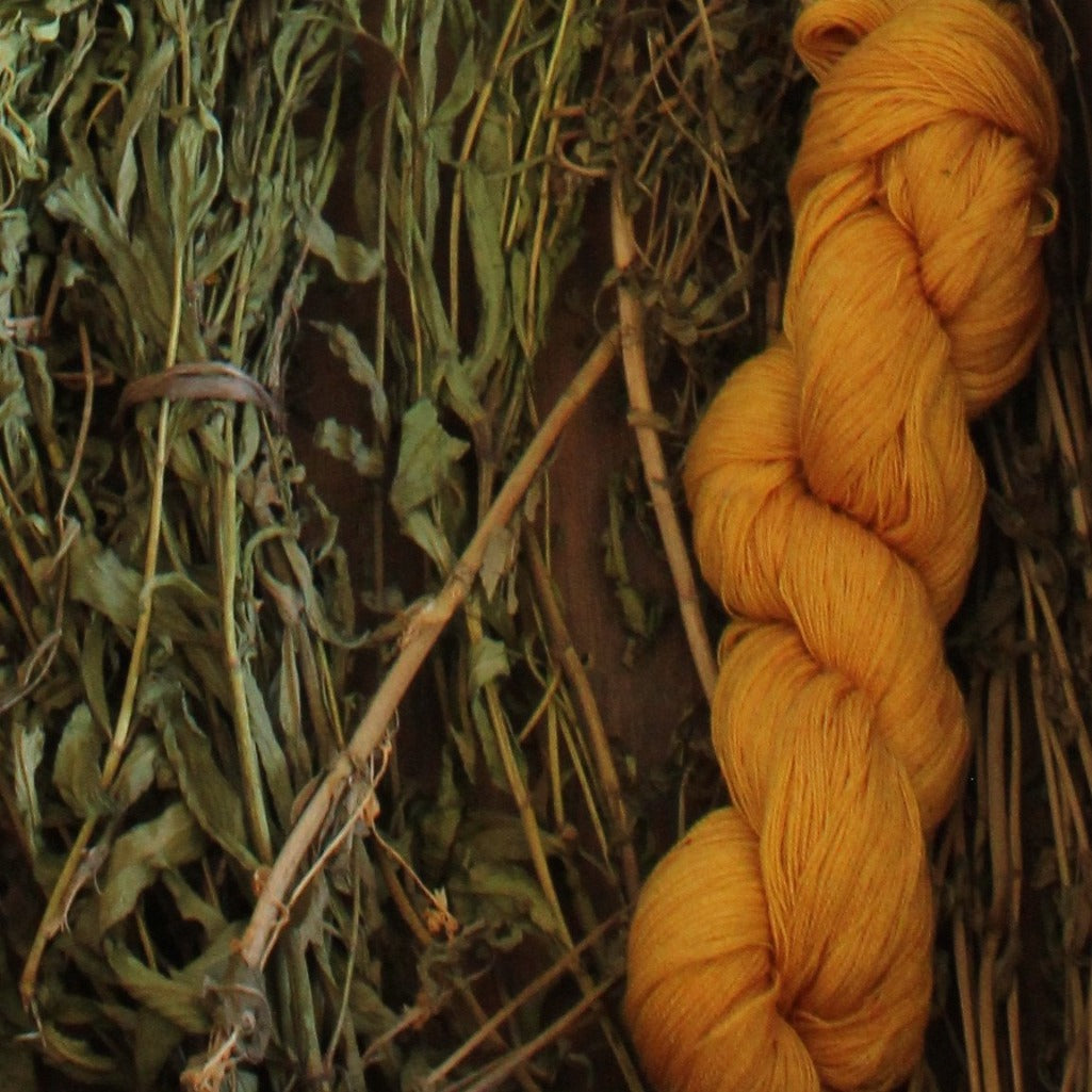 Guatemalan Living Threads Co artisan handmade blanket natural dye source