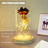 Forever Rose in Glass Dome, 24K Red Rose with 20 LEDS 2M/6.6ft String Light