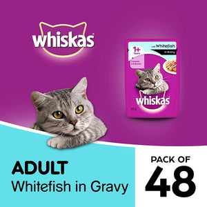 Whiskas Adult (1+ Yrs) Whitefish in Gravy (Monthly Pack), Wet Cat Food 85 g (Pack of 48 Pouches)