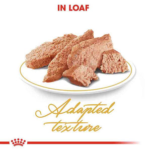 Royal Canin Persian Adult Loaf Wet Cat Food